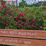 Vandalized Baseball Dugout Bench BDS Movement